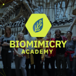 Group logo of Biomimicry Academy